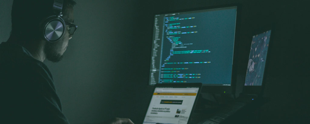 programmer using computer at Golden Lobster Agency